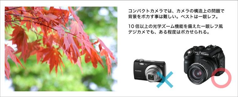 camera006.jpg